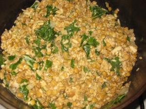 Lentils and Rice plus